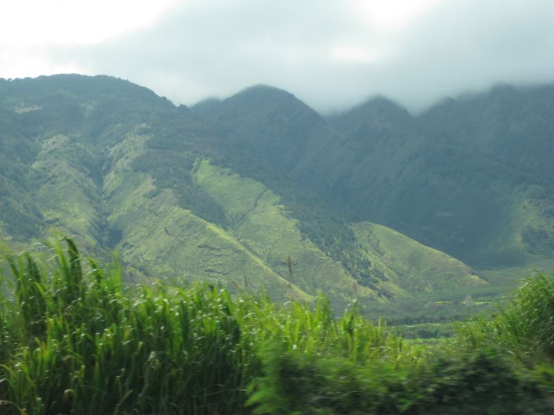 Mountain or Molehill